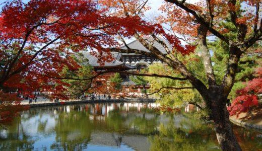 アットホームで働きやすい?奈良のガールズバーの特徴